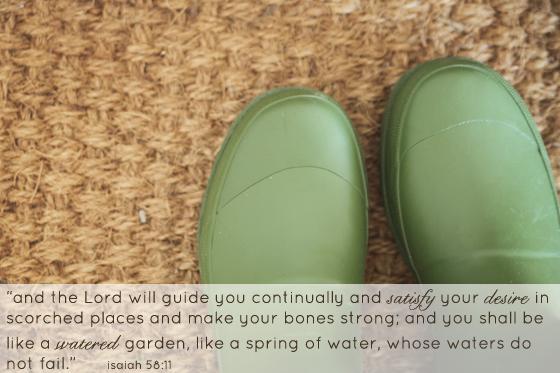 spring gardening.