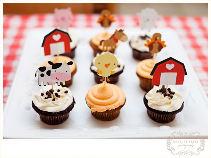 first birthday party farm theme