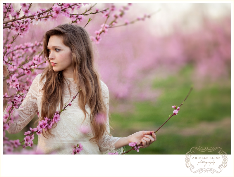 springtime beauty.