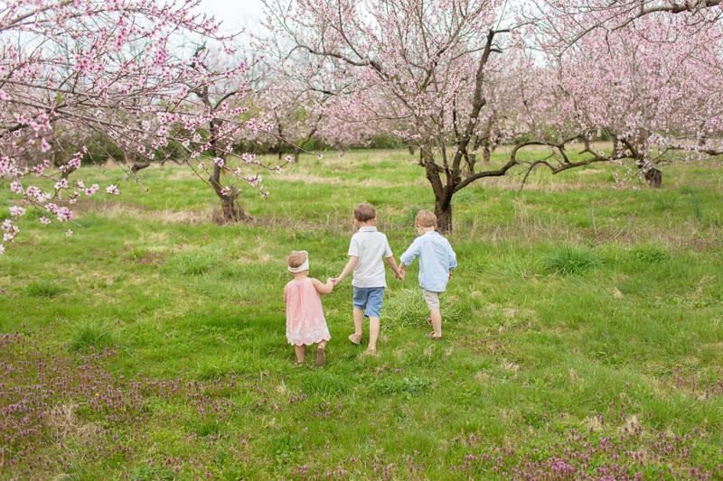 orchard blooms & grumpy kids.